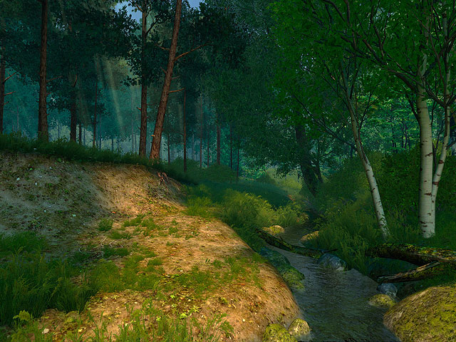Summer Forest 3d Screensaver Give Yourself A Chance To